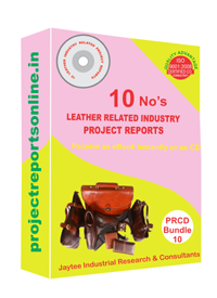 Leather Industry Related 10 Project Reports