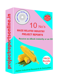 10 Maize Industry Related Project Reports