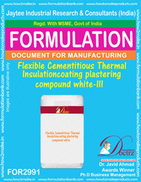 Flexible Cementitious Thermal Insulation coating plastering(2991