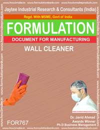 WALL CLEANER (FORMULA 767)